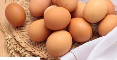 Nơi bán máy đánh trứng để bàn giá rẻ