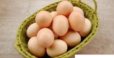 Máy đánh trứng 5 lít giá bao nhiêu