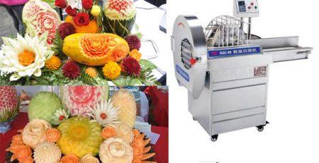 Tìm hiểu về máy cắt rau củ