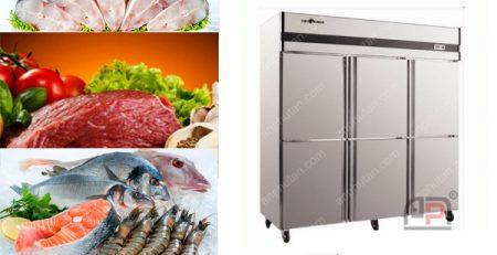 Mẫu tủ lạnh công nghiệp giá rẻ